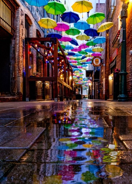 Fb_umbrella_alley_in_the_rain__medium_
